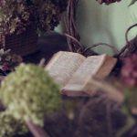 Andreas Altmann: Podróż przez samotny kontynent