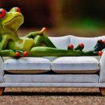 Couchsurfing 6 wskazówek jak zostać solidnym couchsurferem