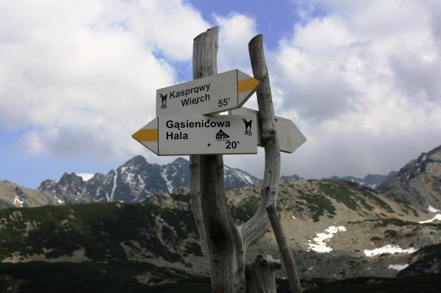 Drogowskaz w Tatrach