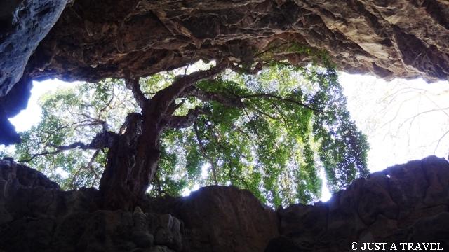Jaskinia Cacahuamilpa