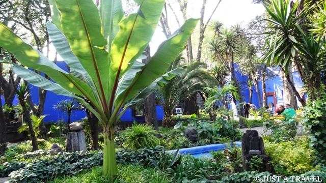 ogród Fridy Kahlo