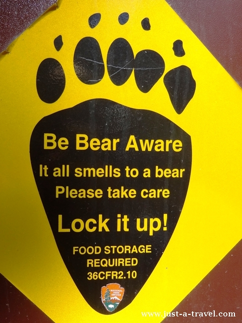 be aware of the bear