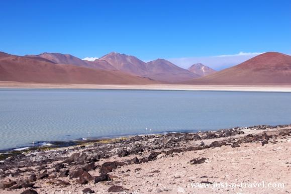 Laguna Blanca Boliwia