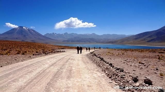 Laguna Miscanti Chile