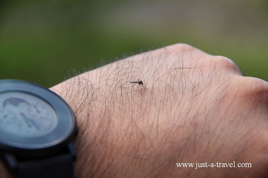 Komar z Inari - Inari i komary
