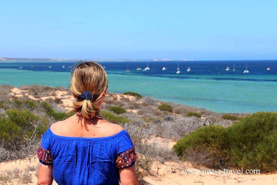 Zatoka Rekina w Australii