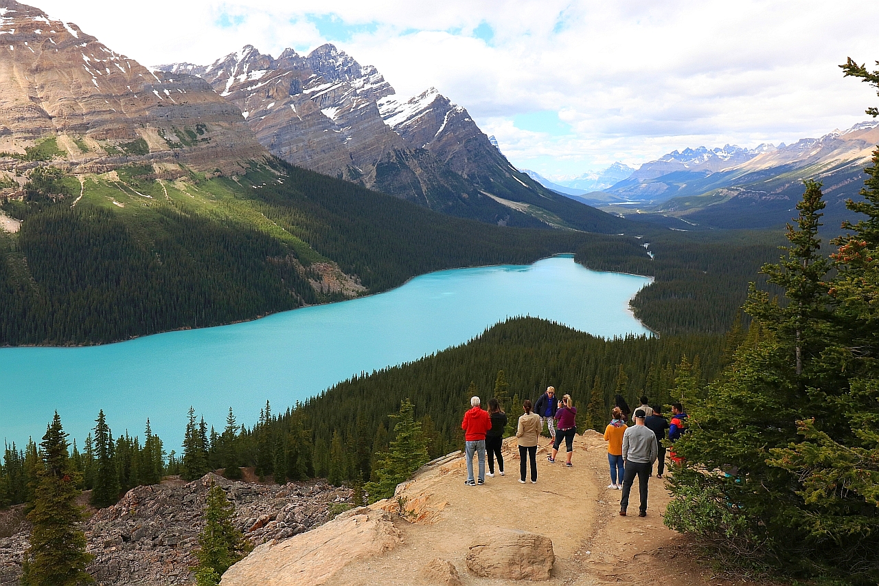 Park Narodowy Banff Peyto Lake