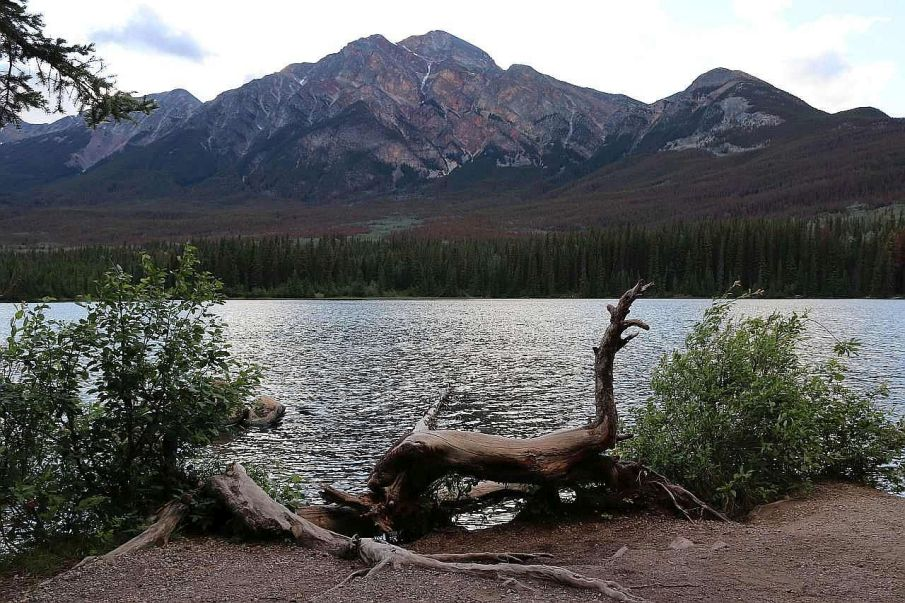 Park Narodowy Jasper i Piramid Lake