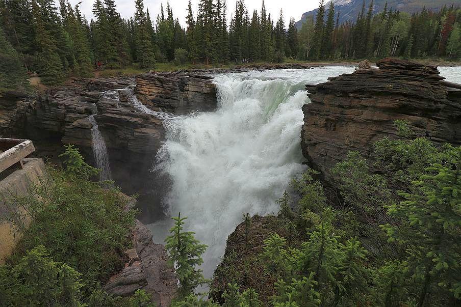 Wodospad Athabasca Kanada