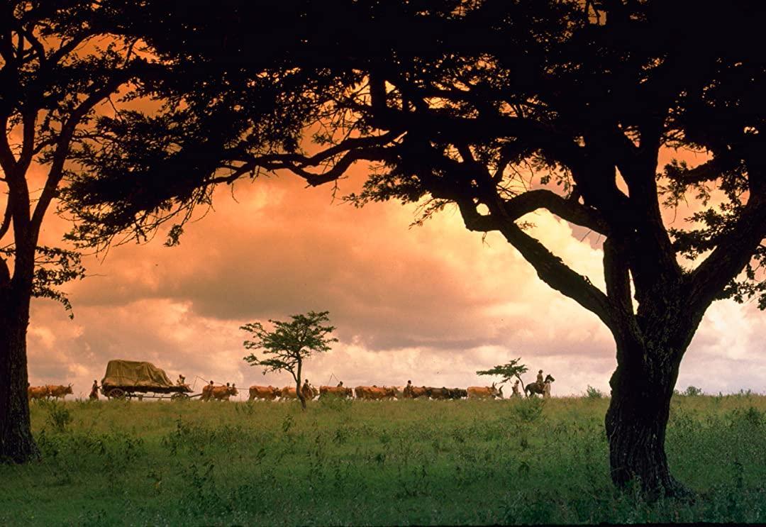 Filmy podróżnicze Pożegnanie z Afryką