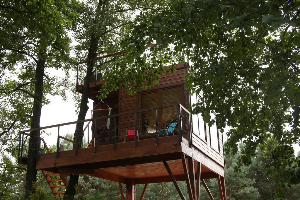 Niezwykłe miejsca na nocleg w Polsce Domek na drzewie